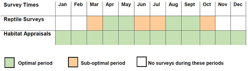 reptile survey calendar times